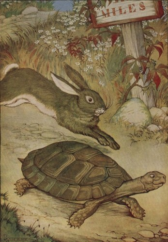 A Turtle In A Field Of NaNo Hares