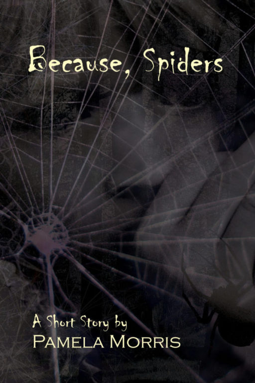 Because, Spiders : A Short Story