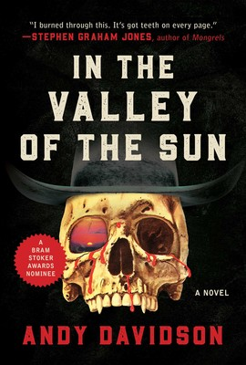 Book Review – In The Valley Of The Sun by Andy Davidson